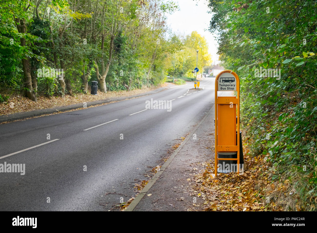 Temporary bus stop sign in a rural village tree lined road with no traffic, hamstreet, kent, uk - Stock Image