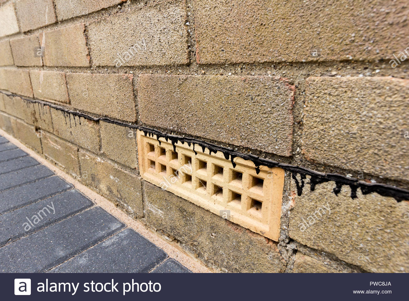 Air brick and bitumen damp proof course situated in an exterior wall of a property - Stock Image