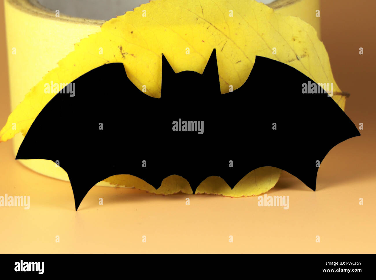 a beautiful black, big paper bat for halloween party. it is symbol