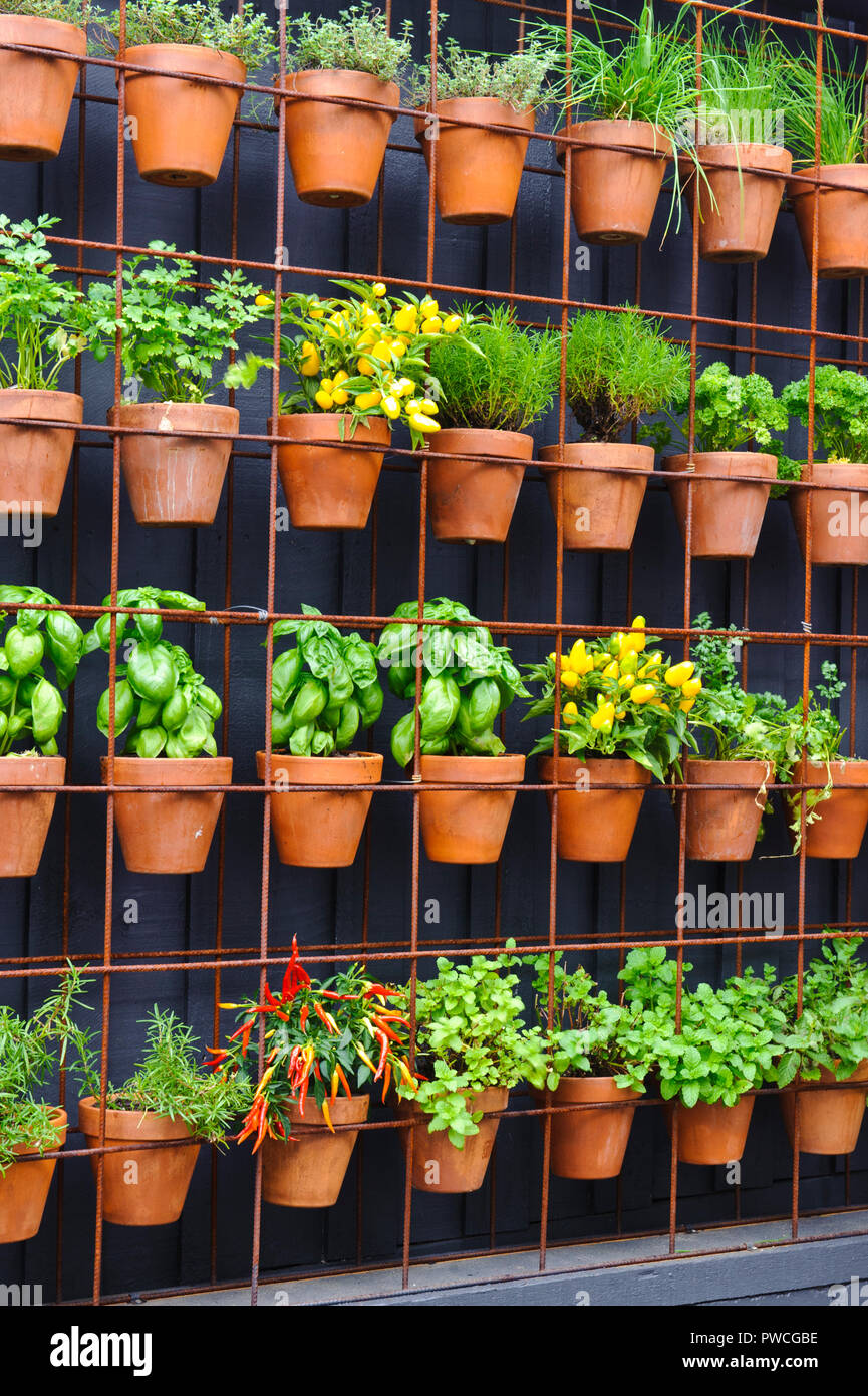 Vertical Herb Garden Made Up Of Individual Terracotta Pots On A