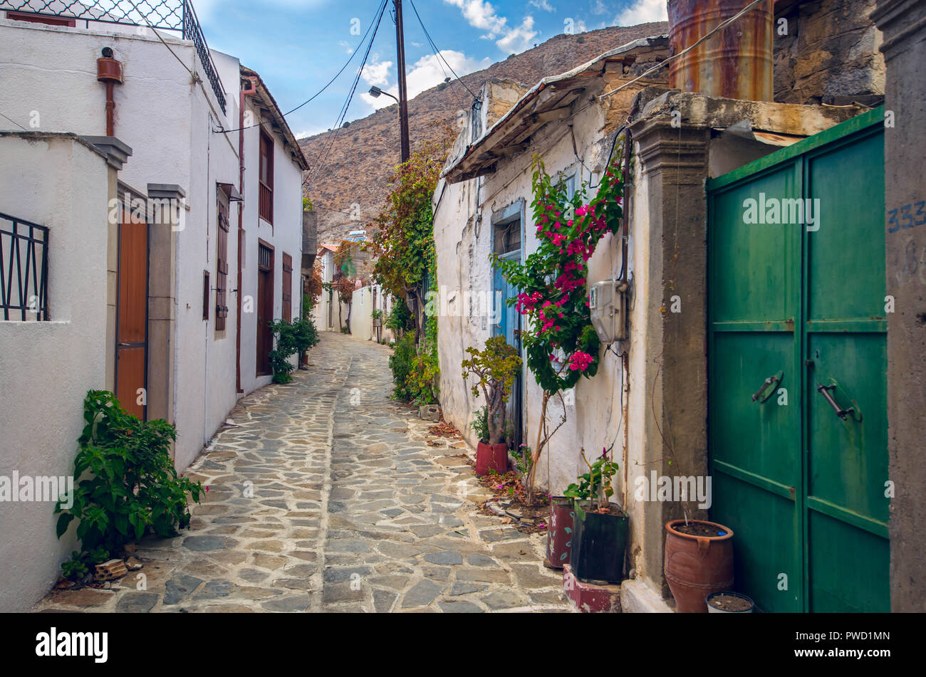 beautiful view of scenic narrow alley with  traditional houses colorful flowers and cobbled street  in a village of crete. Stock Photo
