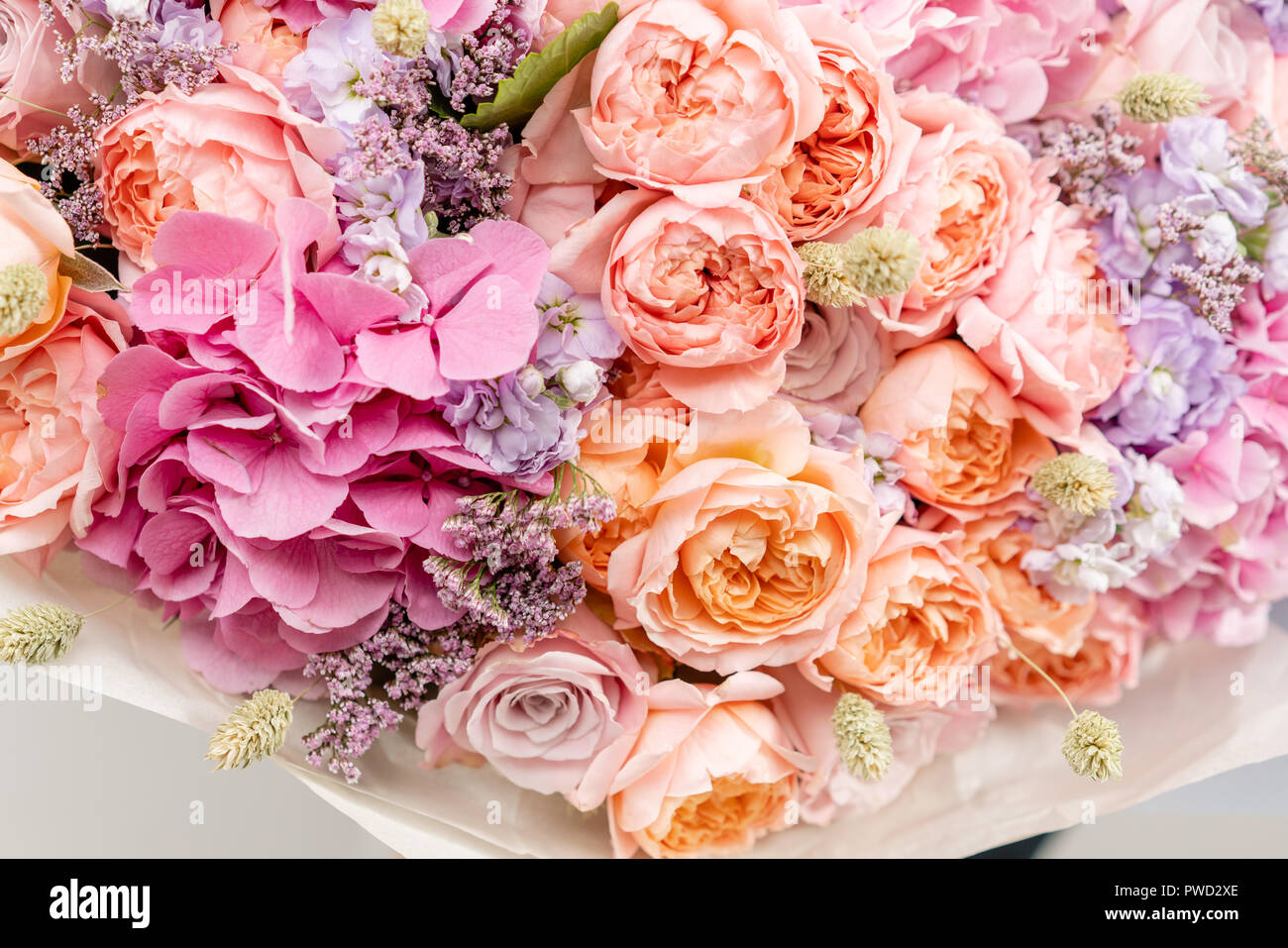 beautiful spring bouquet. composition of different colors. background - Stock Image