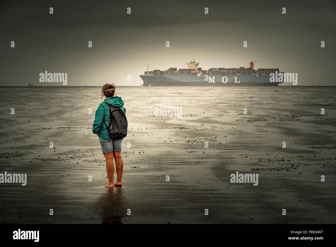 Deutschland, Niedersachsen, Cuxhaven, Neuwerk, Wattenmeer, Watt, Containerschiff - Stock Image