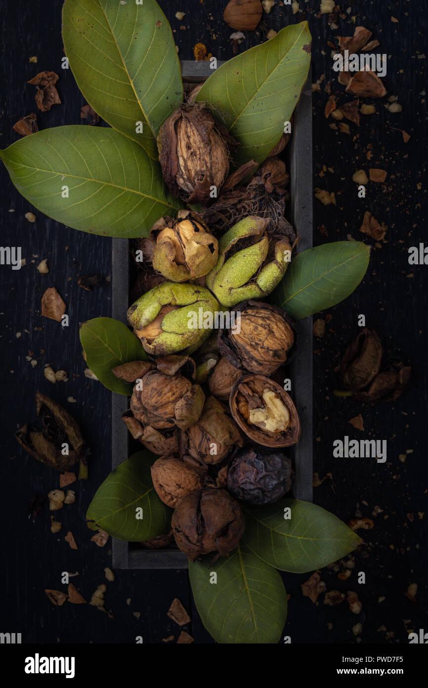 Frische und reife ganze oder geknackte Walnüsse mit Blättern in einer Kiste auf dunklem Untergrund - Stock Image