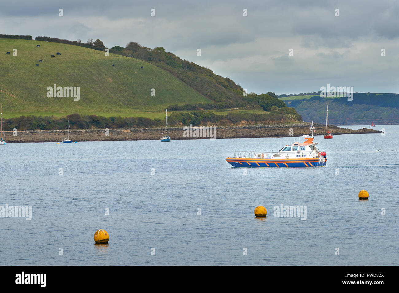 A pilot boat from Falmouth leaves the English channel to enter the river Fal at Carrick Roads, with the Roseland peninsula in the background. - Stock Image