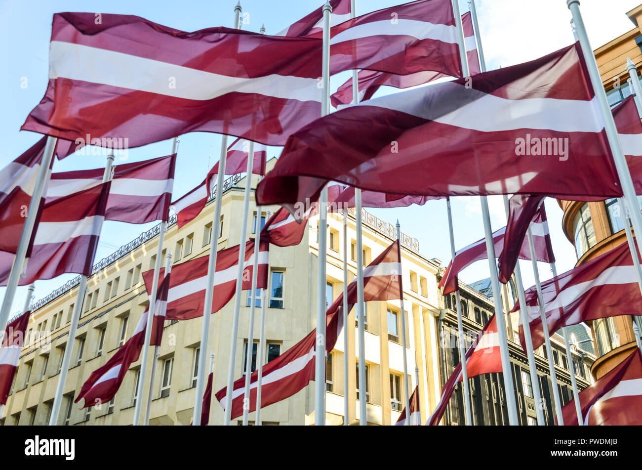 Latvian flags flying in Riga, Latvia - Stock Image