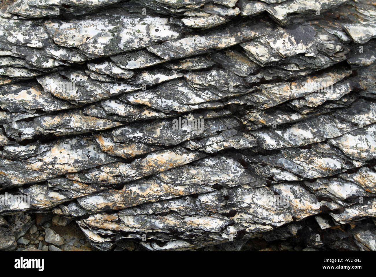 shinning surface and texture of fine grained metamorphic rock - Stock Image