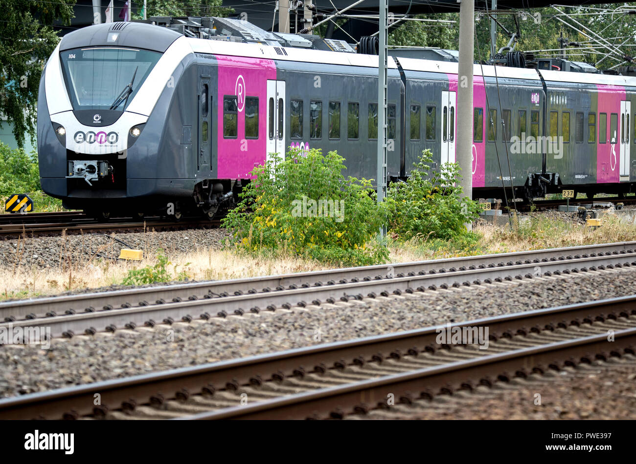 Wolfsburg, Lower Saxony. 21st Sep, 2018. 21 September 2018, Germany, Wolfsburg: A local train from Enno, a brand of Metronom Eisenbahngesellschaft mbH, enters the main station. Enno operates local public transport on railway lines in the Hannover-Braunschweig-Goettingen-Wolfsburg metropolitan region. Credit: Hauke-Christian Dittrich/dpa/Alamy Live News - Stock Image