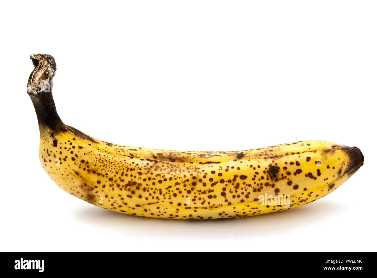 rotten banana isolated on a white background - Stock Image