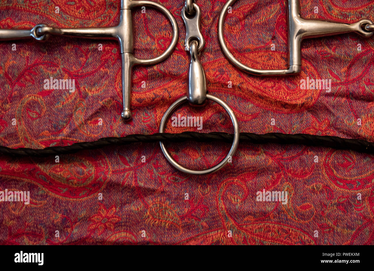 It's the GO and the WOAH in the horse world - Bits, Spurs and reins - Stock Image