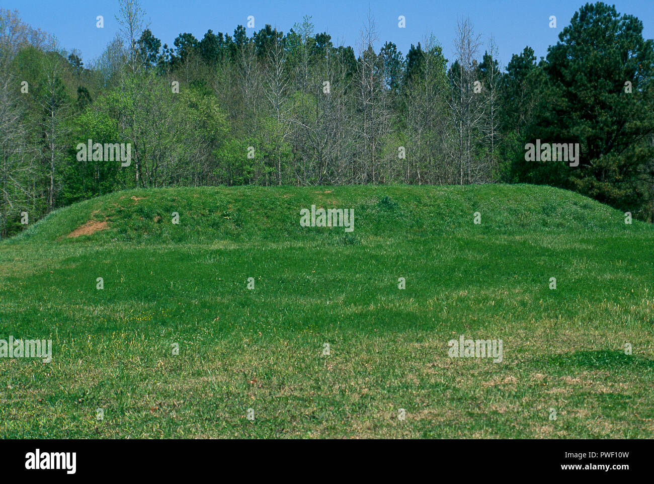 Bear Creek Mound, Natchez Trace, Mississippi, built AD 1200-1400 as a ceremonial structure. Photograph - Stock Image