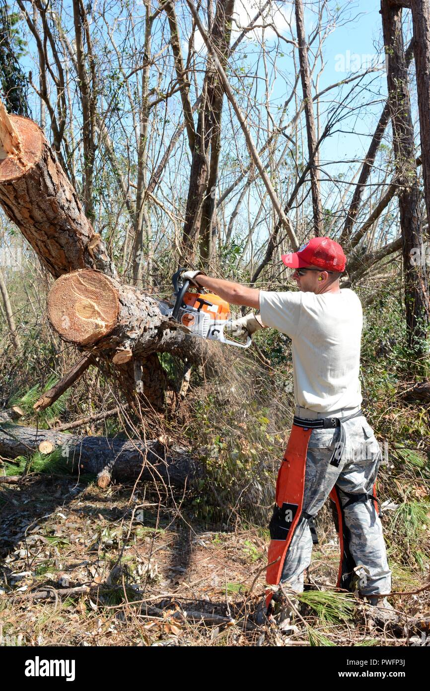 Master Sgt. Christopher Fisher, heavy equipment operator from the 202nd REDHORSE of Camp Blanding, Fla. chainsaws through a fallen tree on Debi Road in the Bayou George area of Panama City Oct. 14, 2018, October 14, 2018. The REDHORSE was called on for their expertise in efficient route clearing after Hurricane Michael came through. (U.S. Air National Guard photo by Staff Sgt. Carlynne DeVine). () - Stock Image