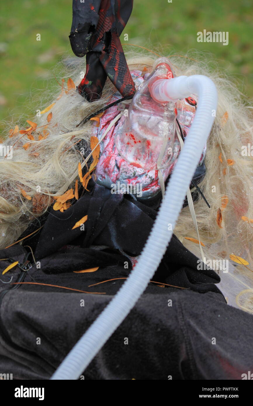 Scary, gruesome, bloodcurdling, and chilling Halloween lawn decoration. - Stock Image