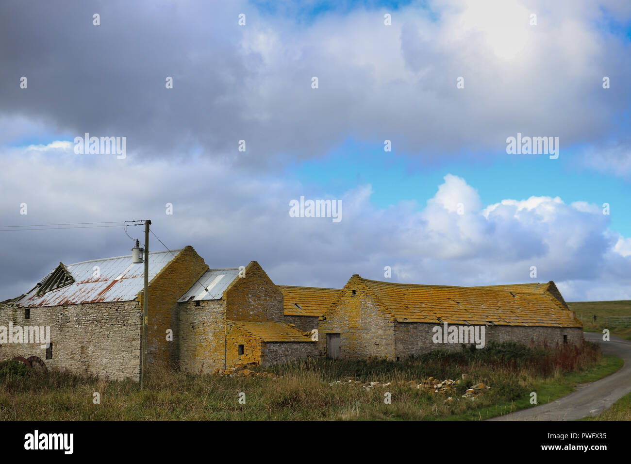 Old stone barns with roofs covered in yellow lichen, under a blue sky with billowing white clouds, green grass, on Rousay Island, Orkney, Scotland - Stock Image