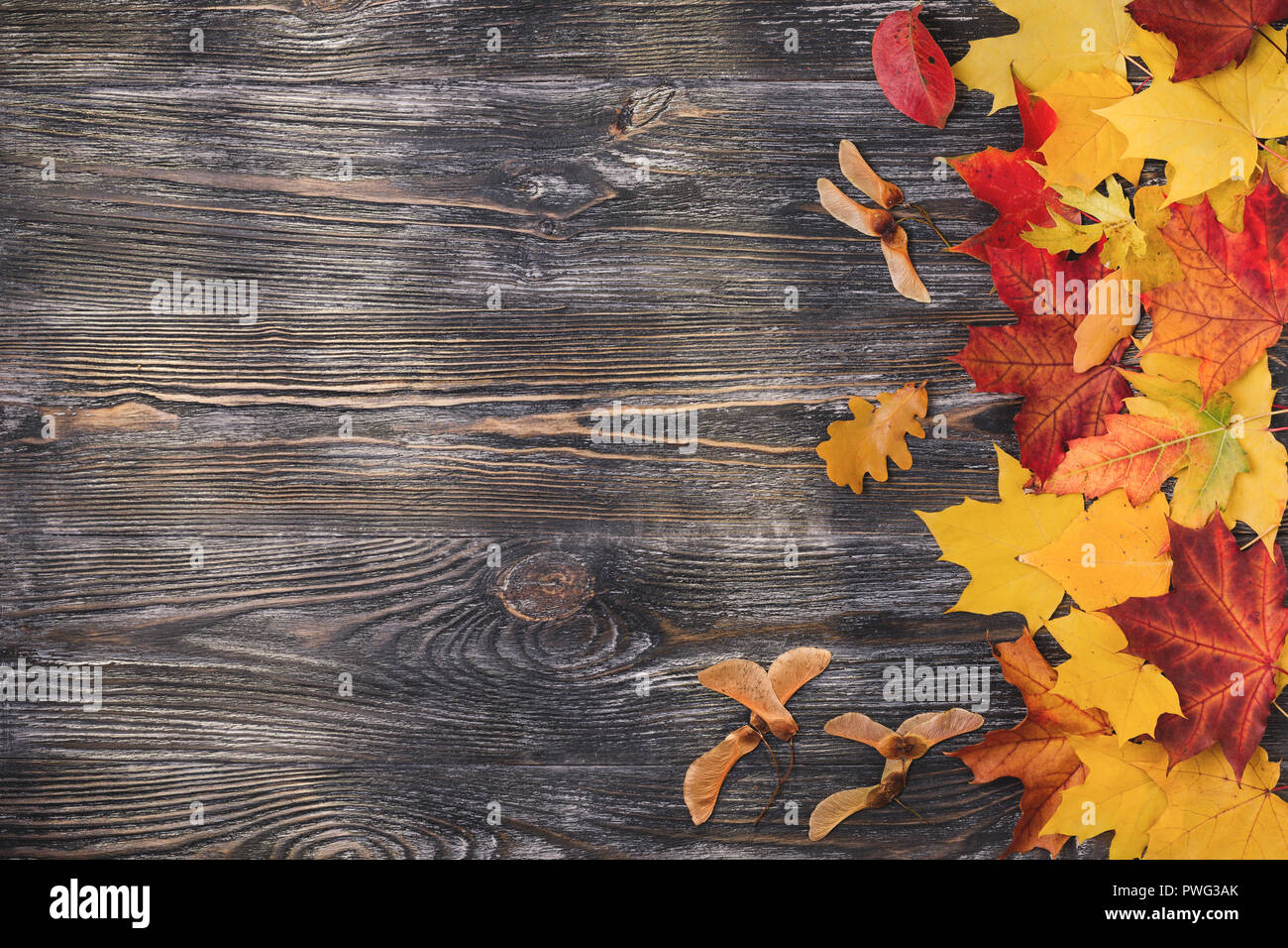 Autumn wooden background with yellow leaves. Top view with copy space. Stock Photo
