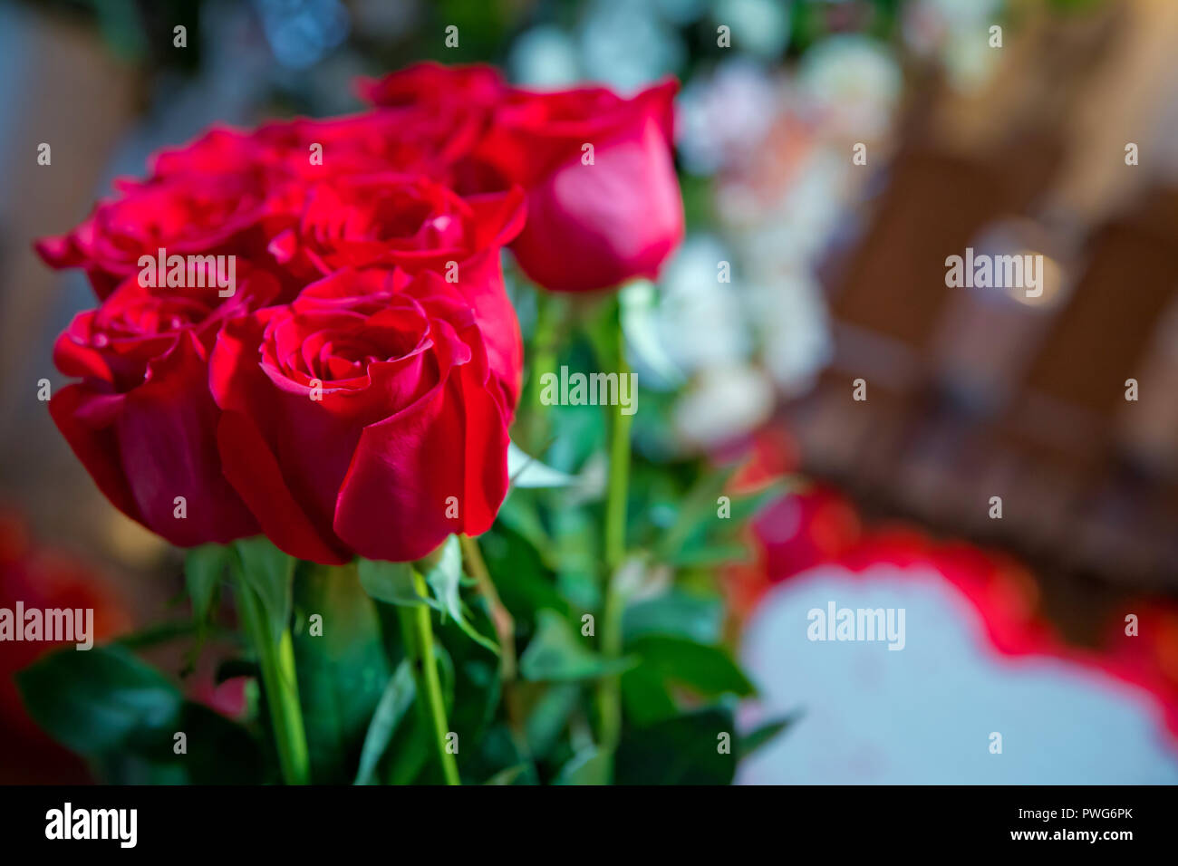 Red Roses Flowers With Valentine Festival And Beautiful Blur Bouquet
