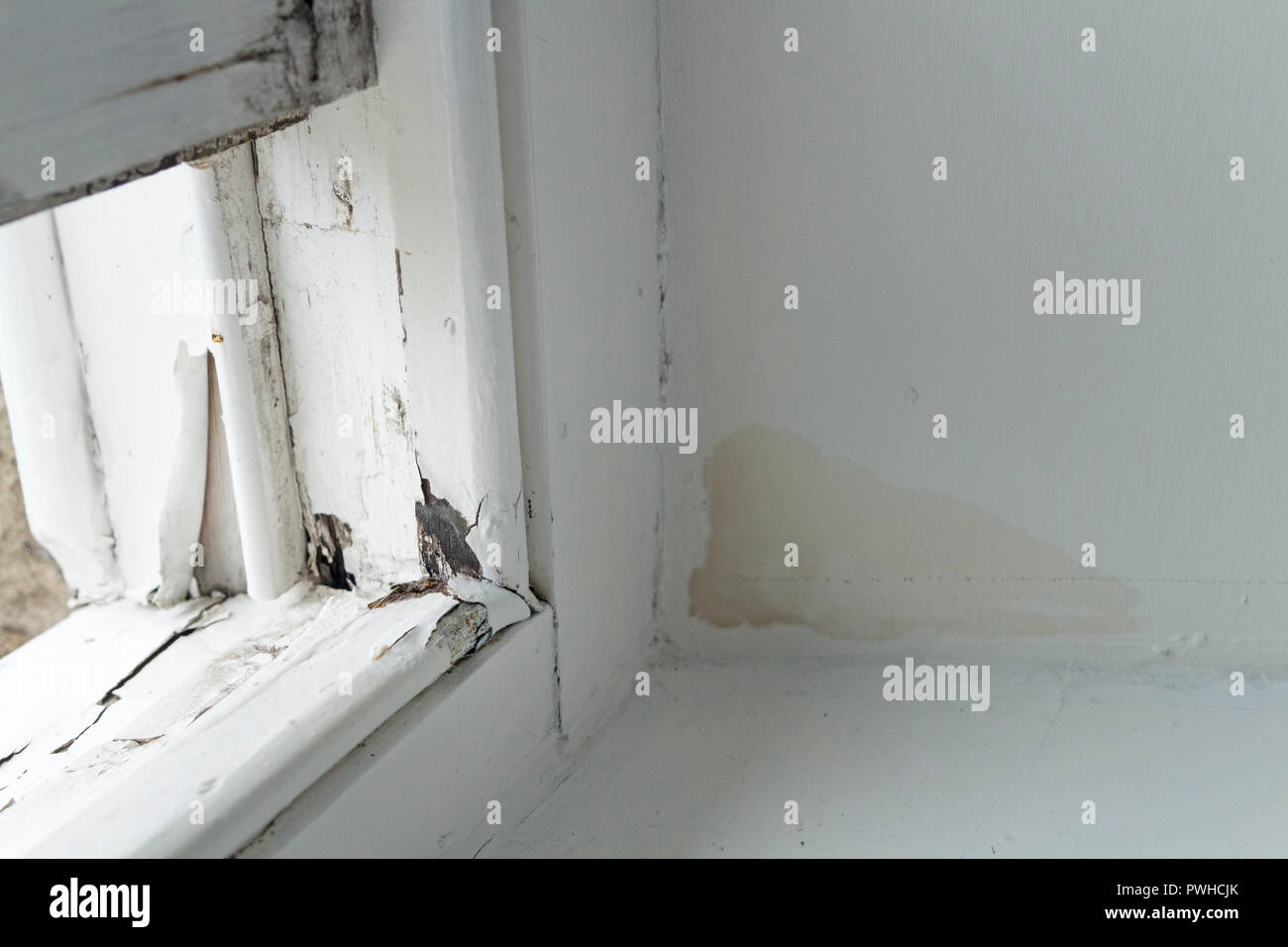 A Rotten Sash Window Frame with Damp Patch Caused by Water Ingress in a Rented Property, UK. - Stock Image