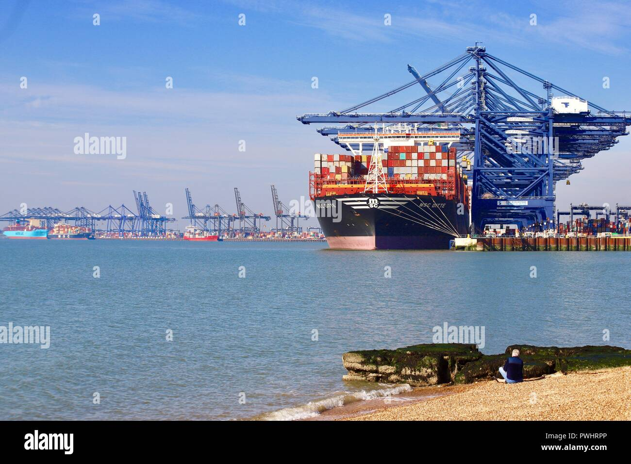 The MSC Ditte container ship docked at the Port of Felixstowe, Suffolk, UK. Sunny afternoon, October 2018. - Stock Image