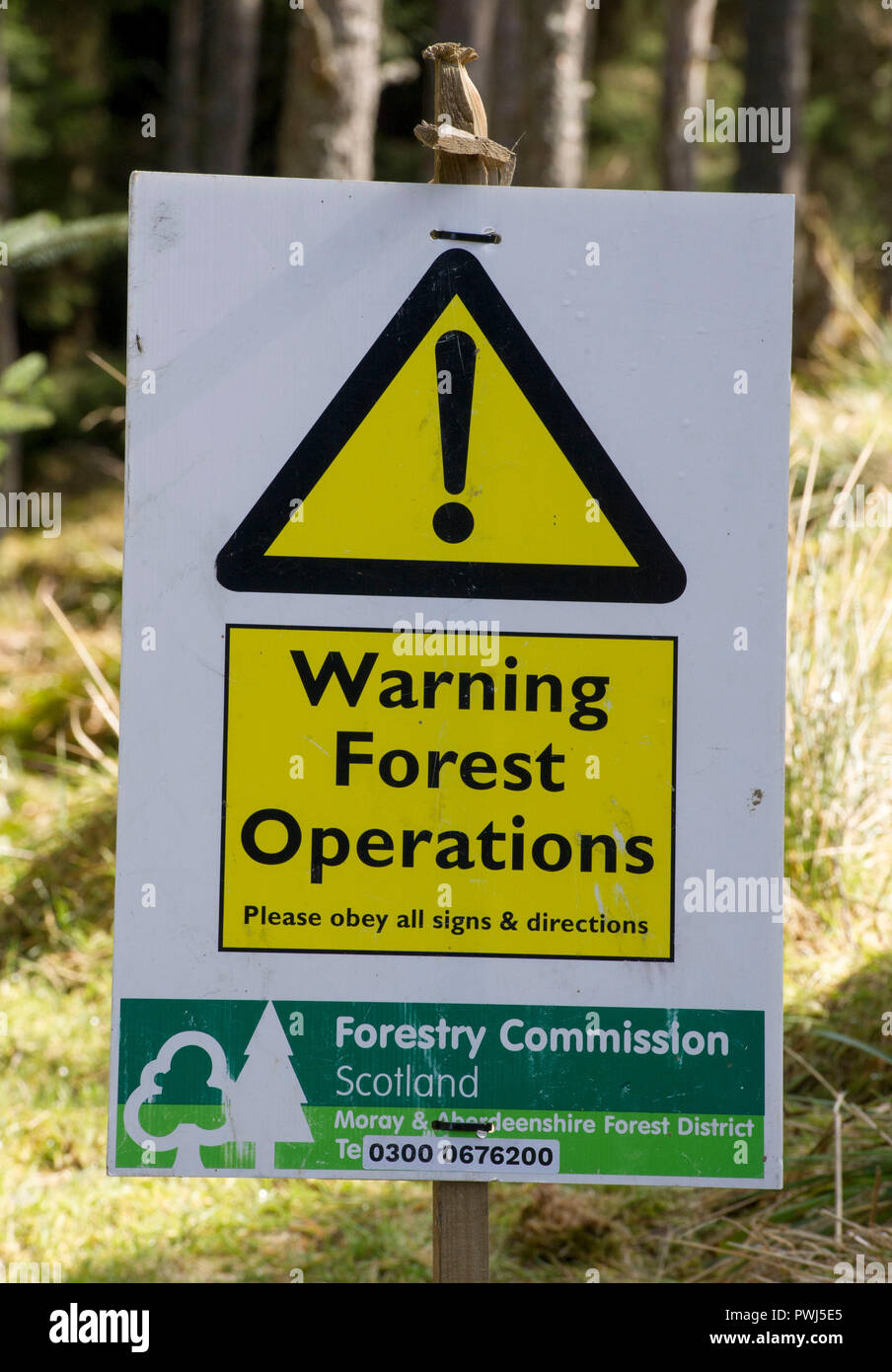 Forestry operation in Clashindarroch Forest., near Huntly, Aberdeenshire. - Stock Image
