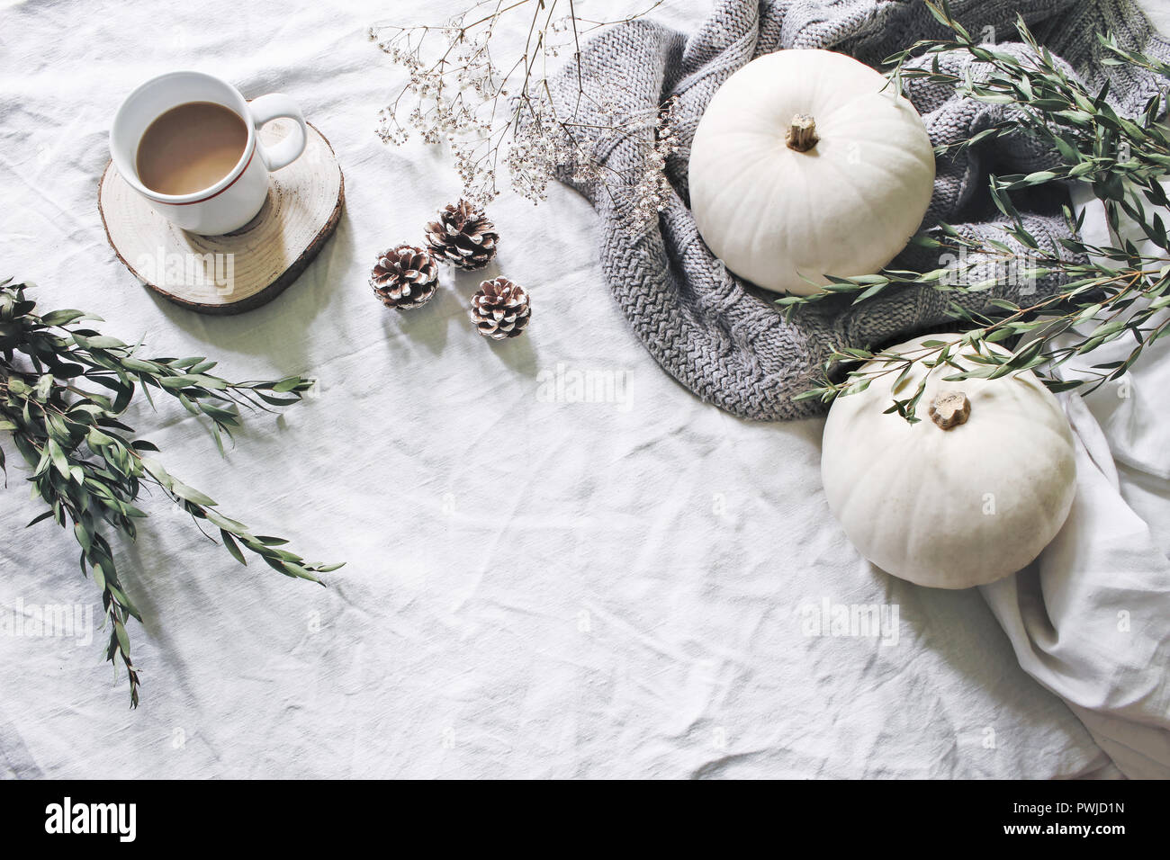 autumn styled photo feminine halloween desktop scene cup of coffee eucalyptus pine cones white pumpkins and gypsophila flowers table background PWJD1N