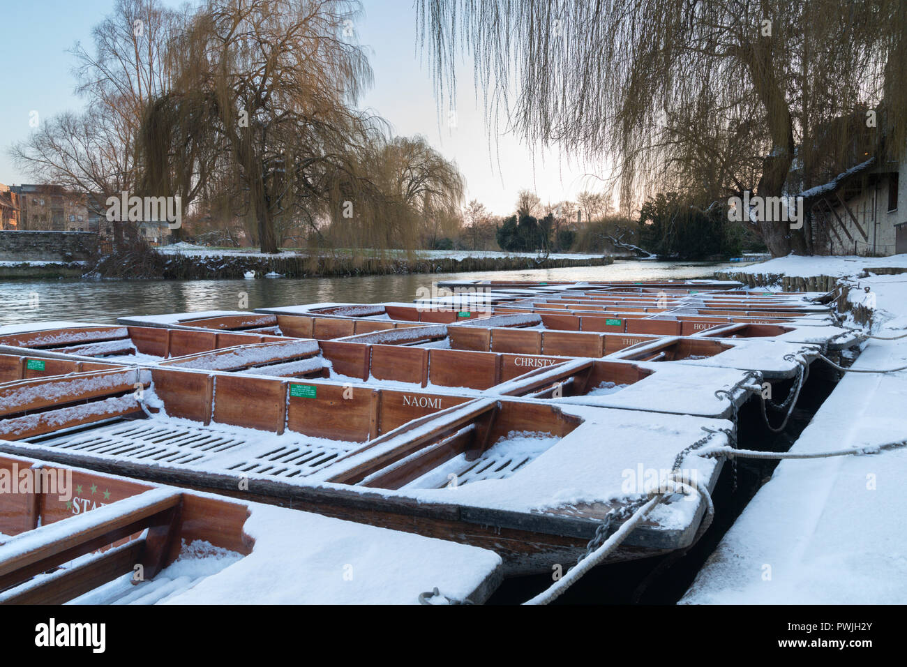 Cambridge punts in the snow, moored up at the Mill pond, Cambridge England, UK - Stock Image