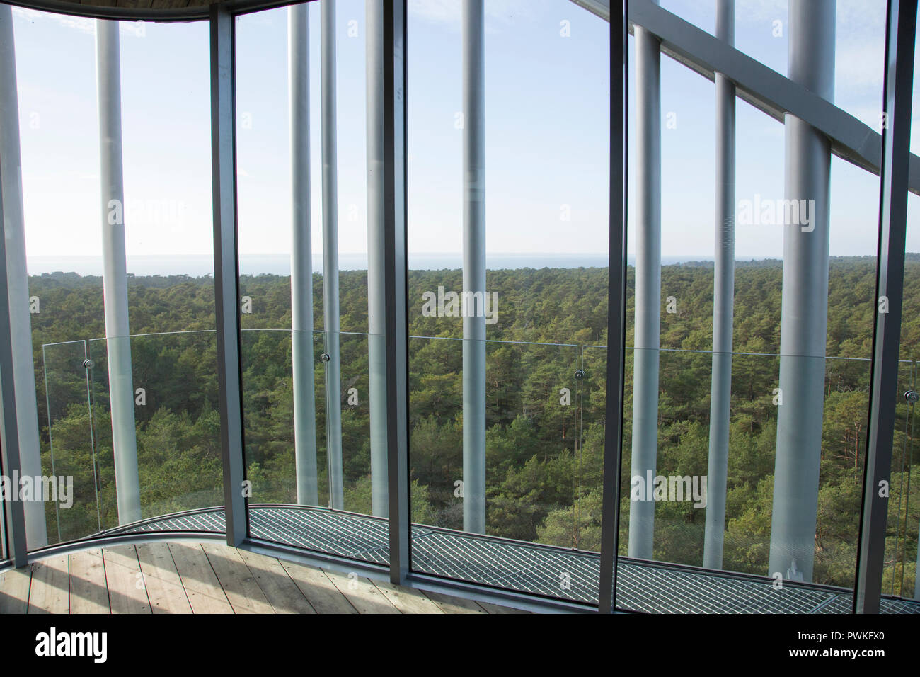 12 October 2018, Estonia, Laulasmaa: View from the 32 metre high viewing platform of the Arvo Pärt Centre. The archive, a concert hall with 150 seats, a library, reading and seminar rooms and exhibition areas are located in the light-flooded new building in a pine forest near the Baltic Sea. (to dpa 'New Centre for Composer Arvo Pärt in Estonia' from 17.10.2018) Photo: Alexander Welscher/dpa - Stock Image