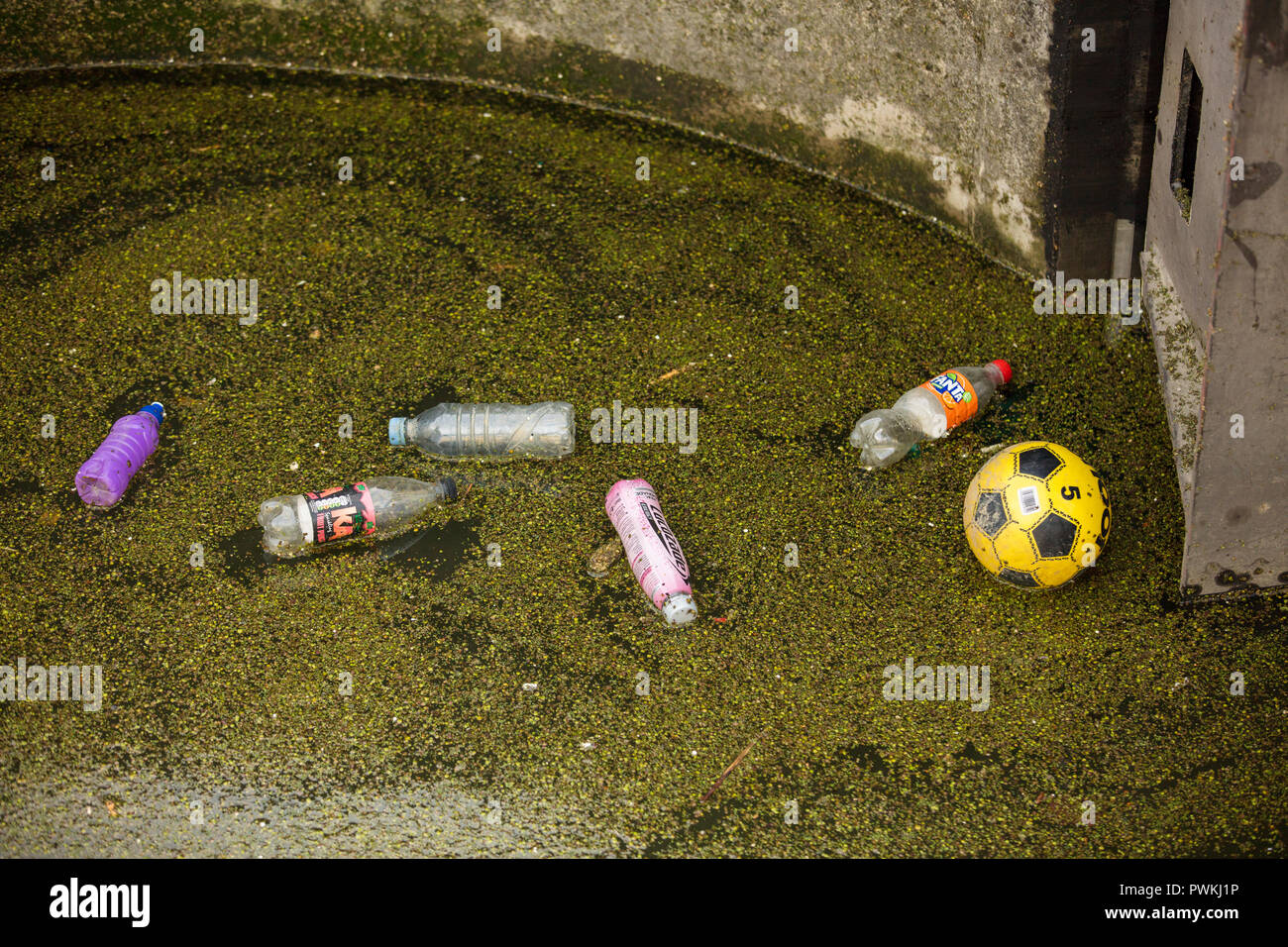 Plastic bottles, ball, floating in the water of Limehouse Basin, London, UK, increasing the pollution and the contamination of canals, rivers and seas - Stock Image