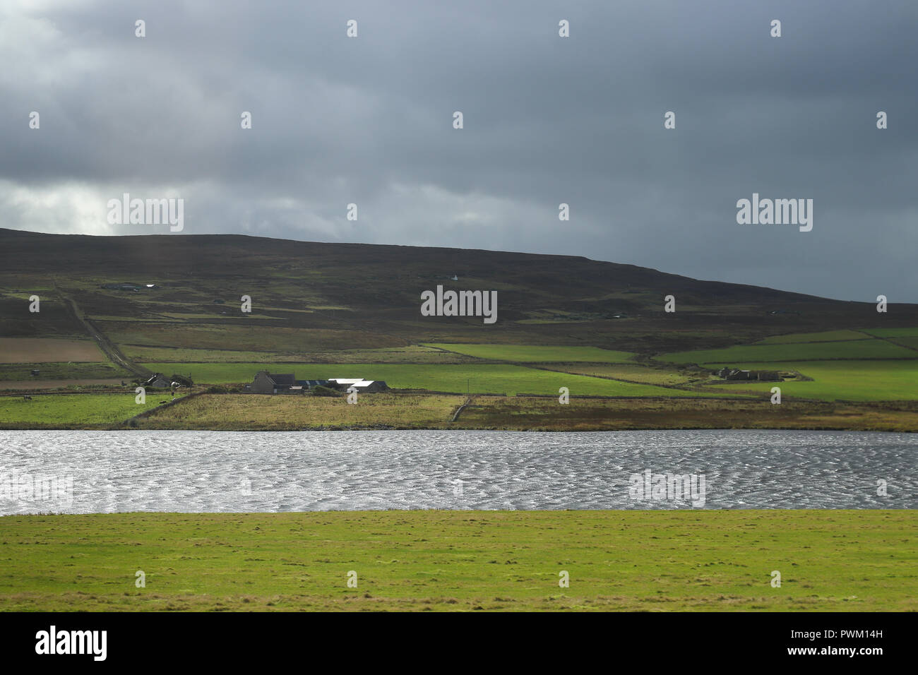 Strong wind blowing down the Loch of Wasbister creates wave pattern on the water. Bright green fields surround it.Distant hill in cloud shadow. Rousay - Stock Image