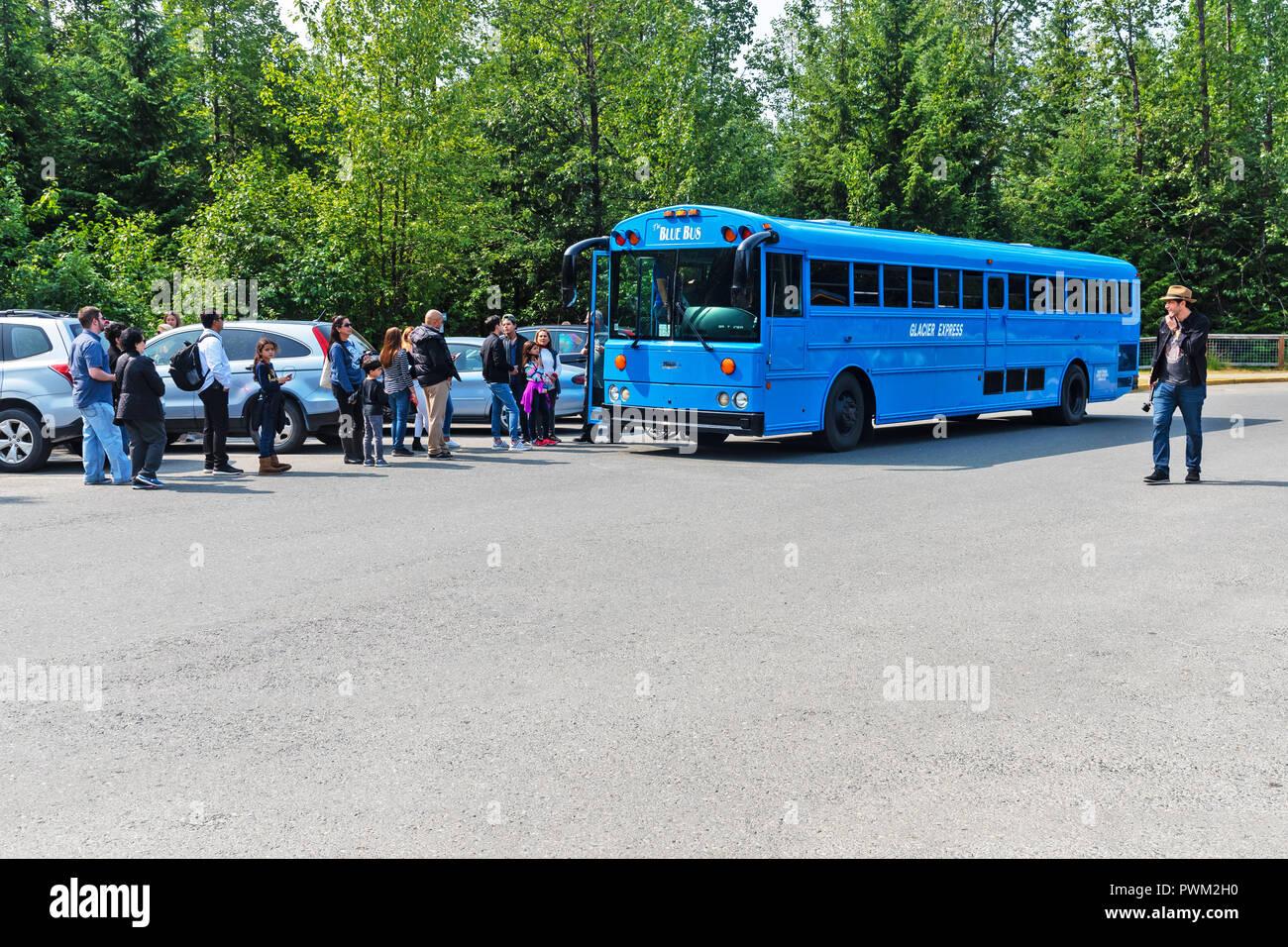 Bus stop, Mendenhall Glacier , Mendenhall Valley, Alaska, USA - Stock Image