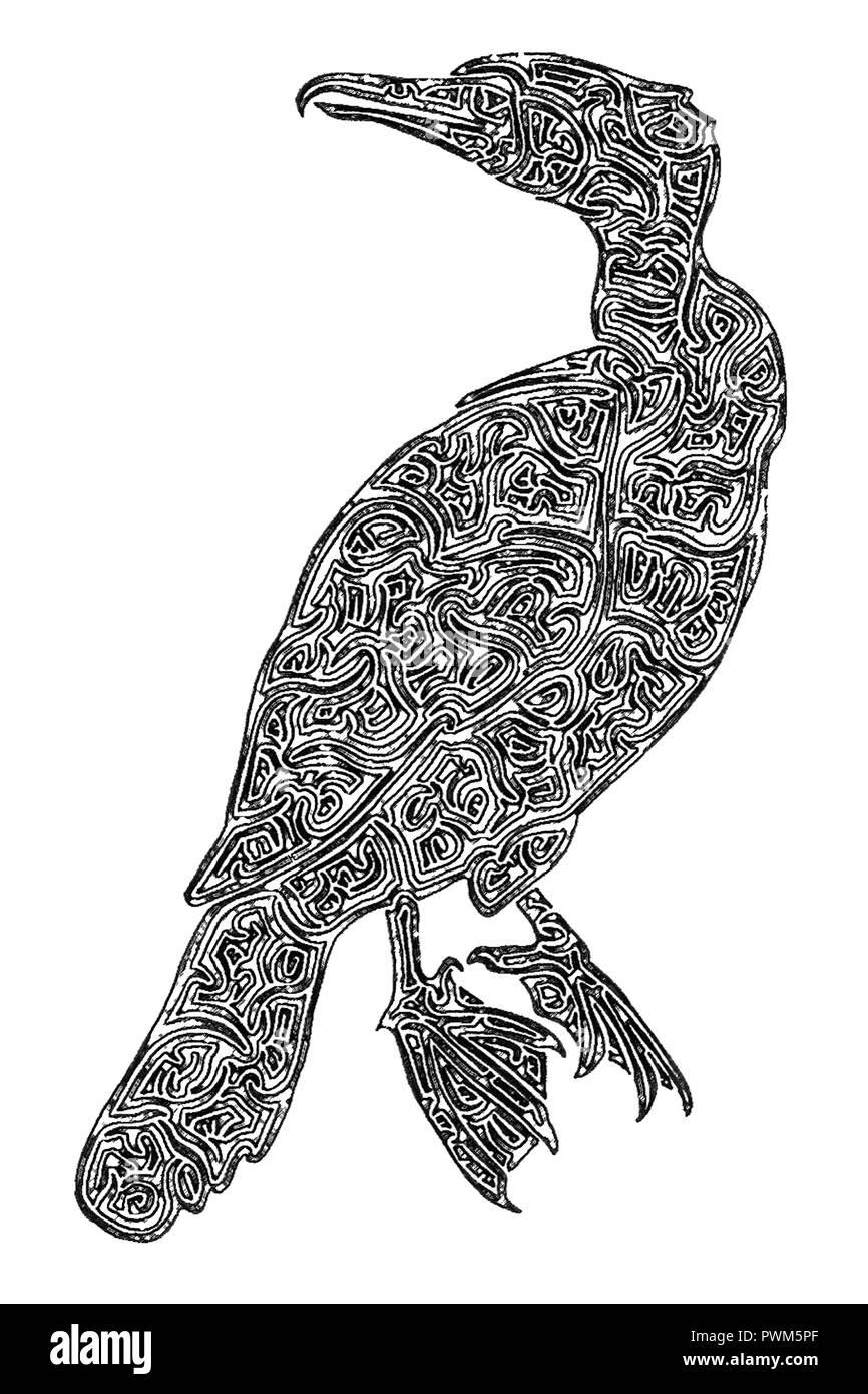 Illustration of a Cormorant, black and white, digital drawing, maze lines - Stock Image