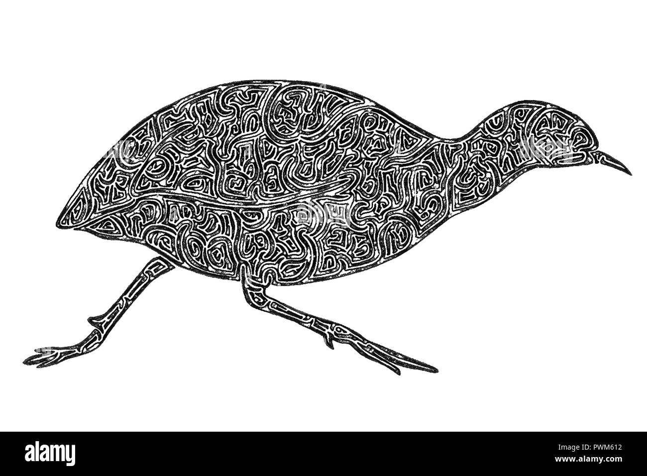 Illustration of a running Tinamou, black-and-white, maze lines - Stock Image