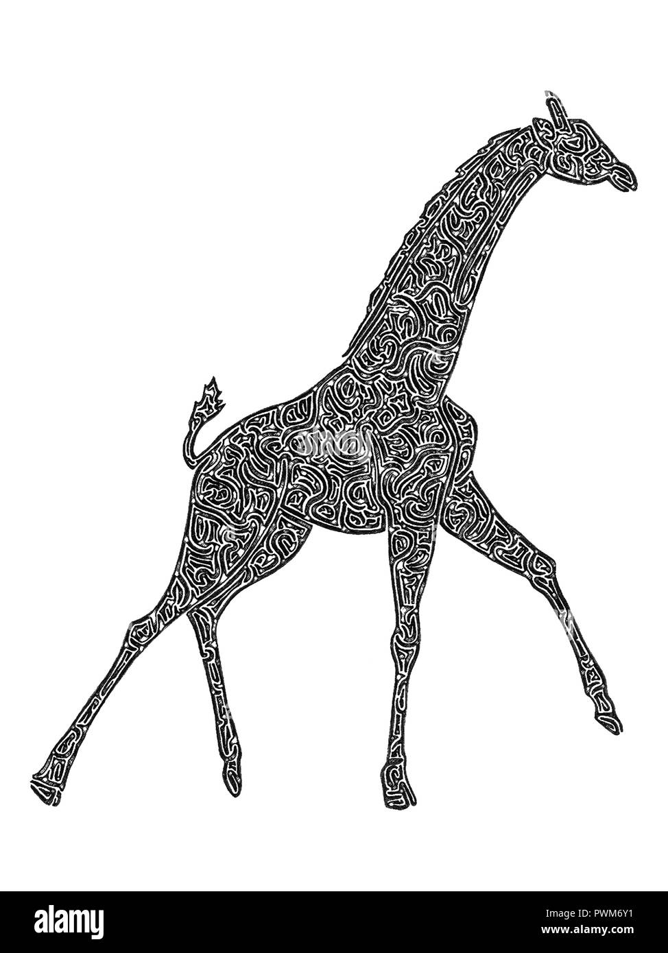 Illustration of a giraffe running, black and white, drawing, maze lines Stock Photo