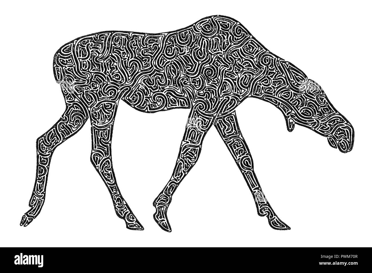 Illustration of a female moose, black and white, drawing, maze lines - Stock Image