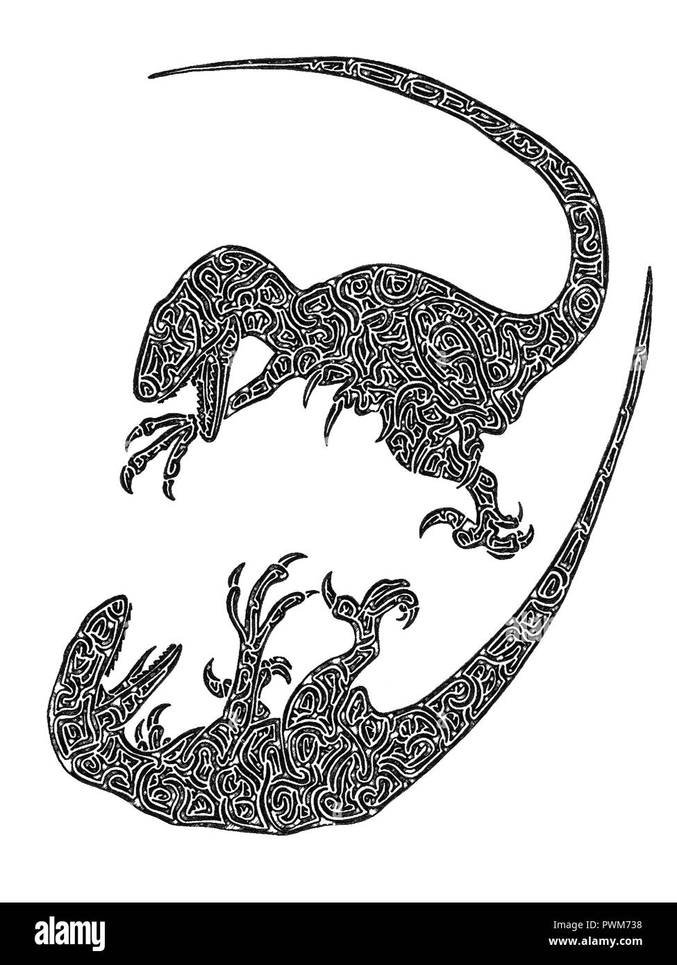 Illustration of two raptors fighting each other, black and white, drawing, maze lines - Stock Image