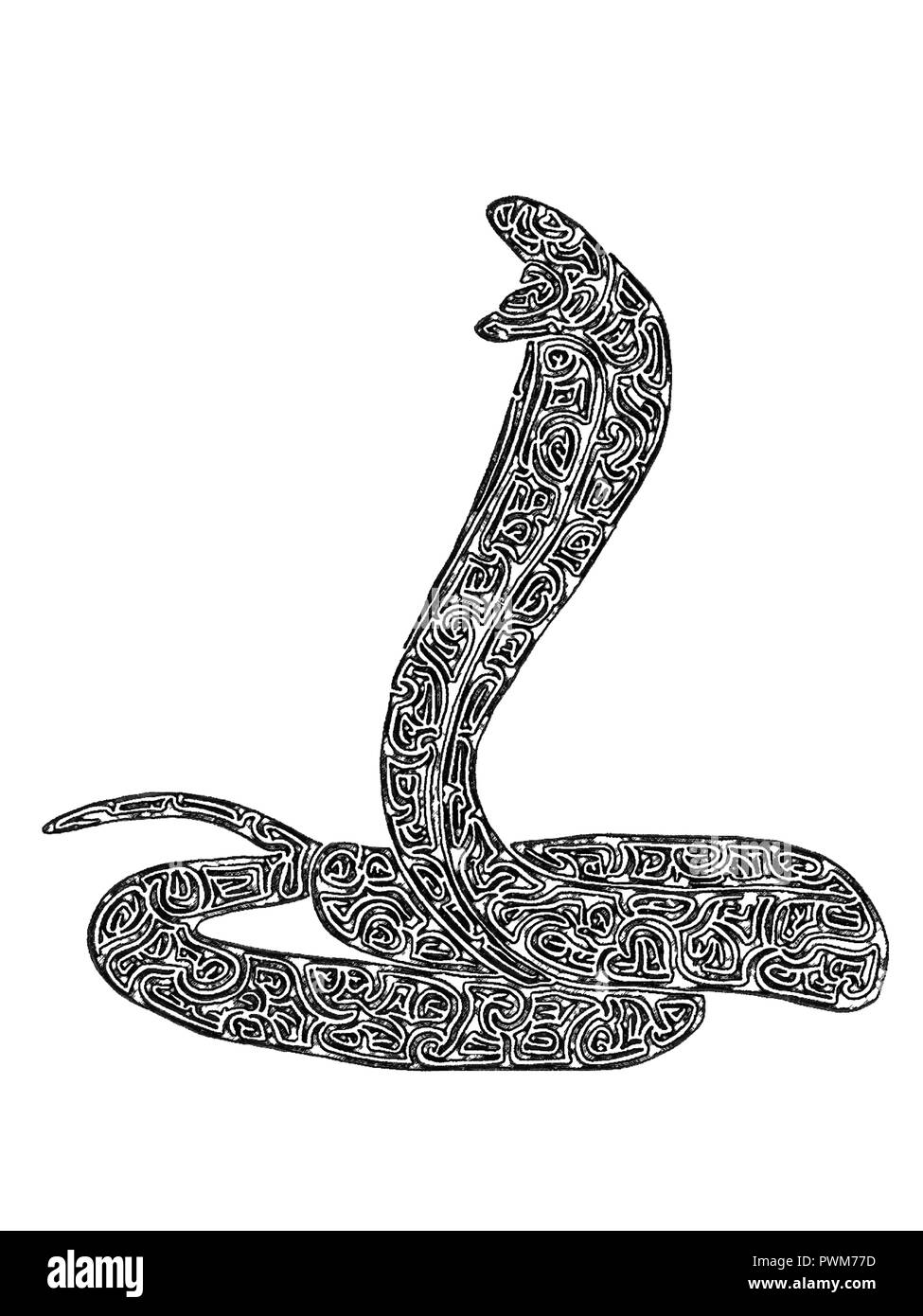 Illustration of Cobra in threatening position with its head upright, black-and-white, maze lines, drawing - Stock Image