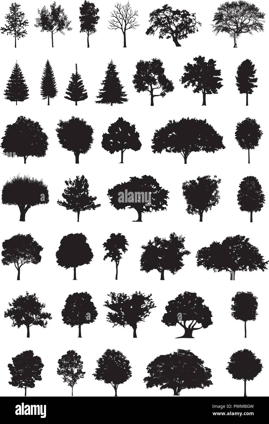 tree silhouette vector illustration - Stock Vector