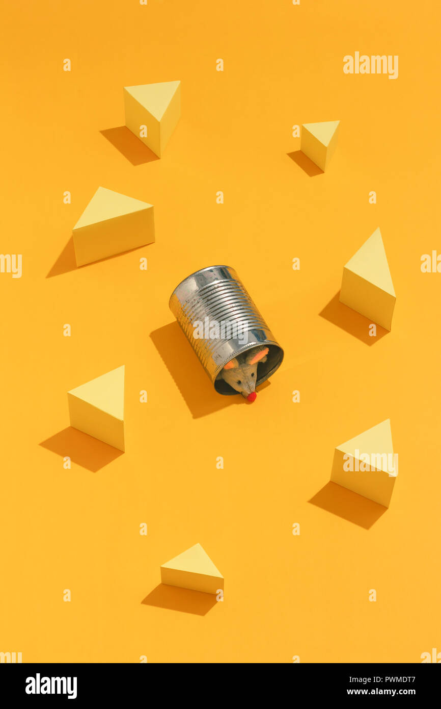 Litlle mice hiding inside a tin can - Stock Image