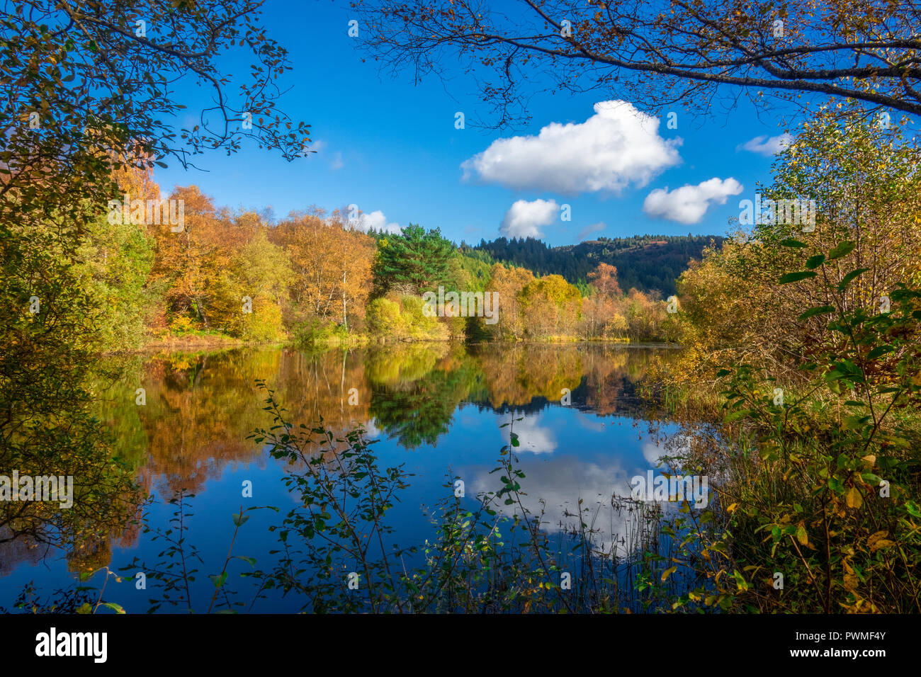 Autumn Trees on a Sunny Day in the Trossachs, Scotland, UK Stock Photo