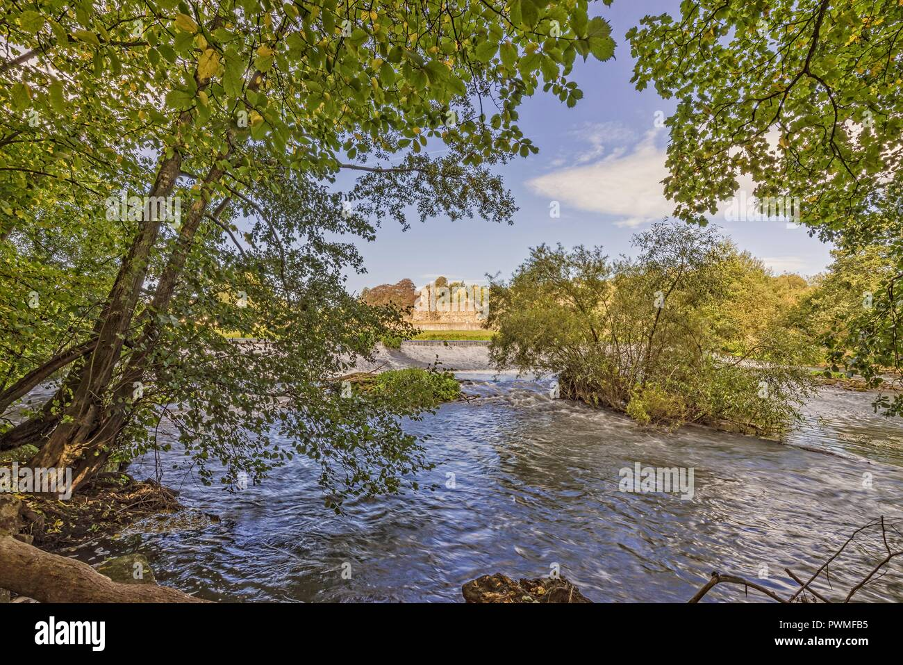 A woodland with the River Derwent flowing downstream from a weir.  The old monastery ruins of Kirkham Priory can be seen in the distance. Stock Photo
