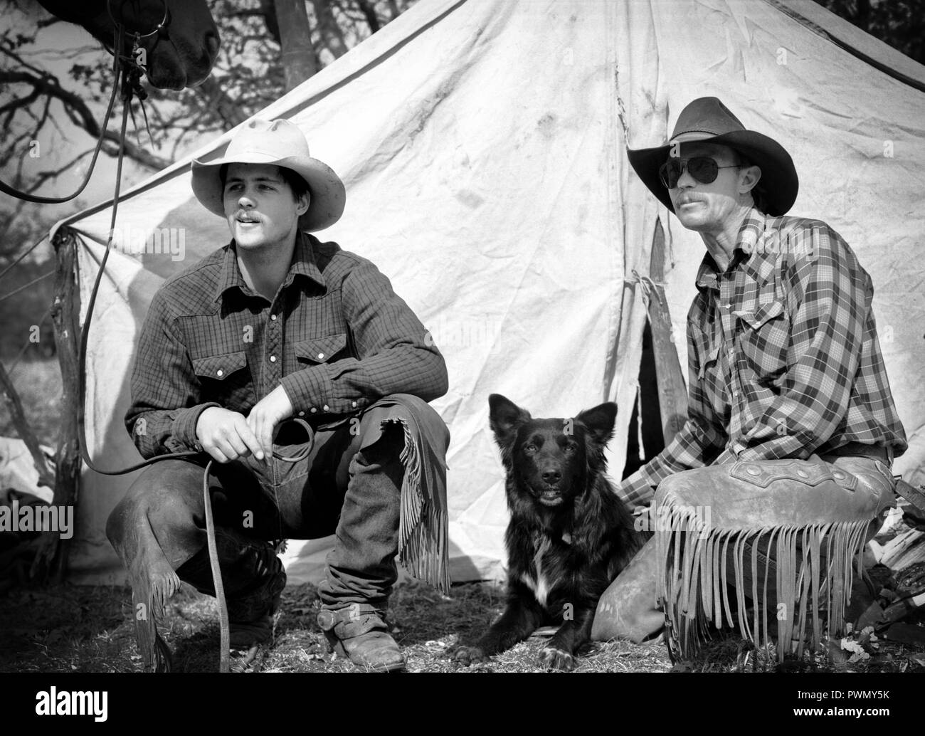 Two cowboys sitting outside their tent with dog - Stock Image