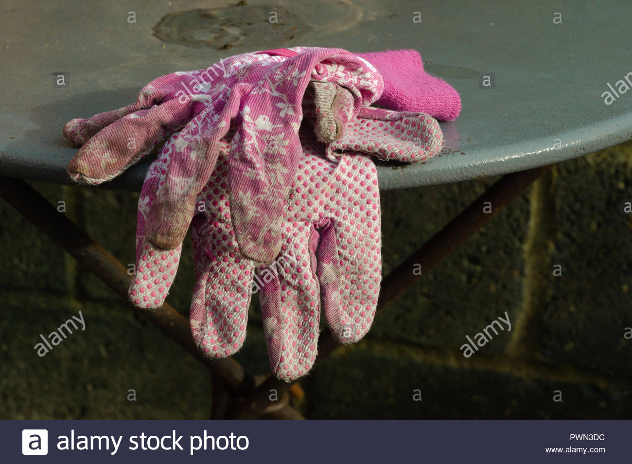 Dirty pink pair of gardening gloves draped over table edge - Stock Image