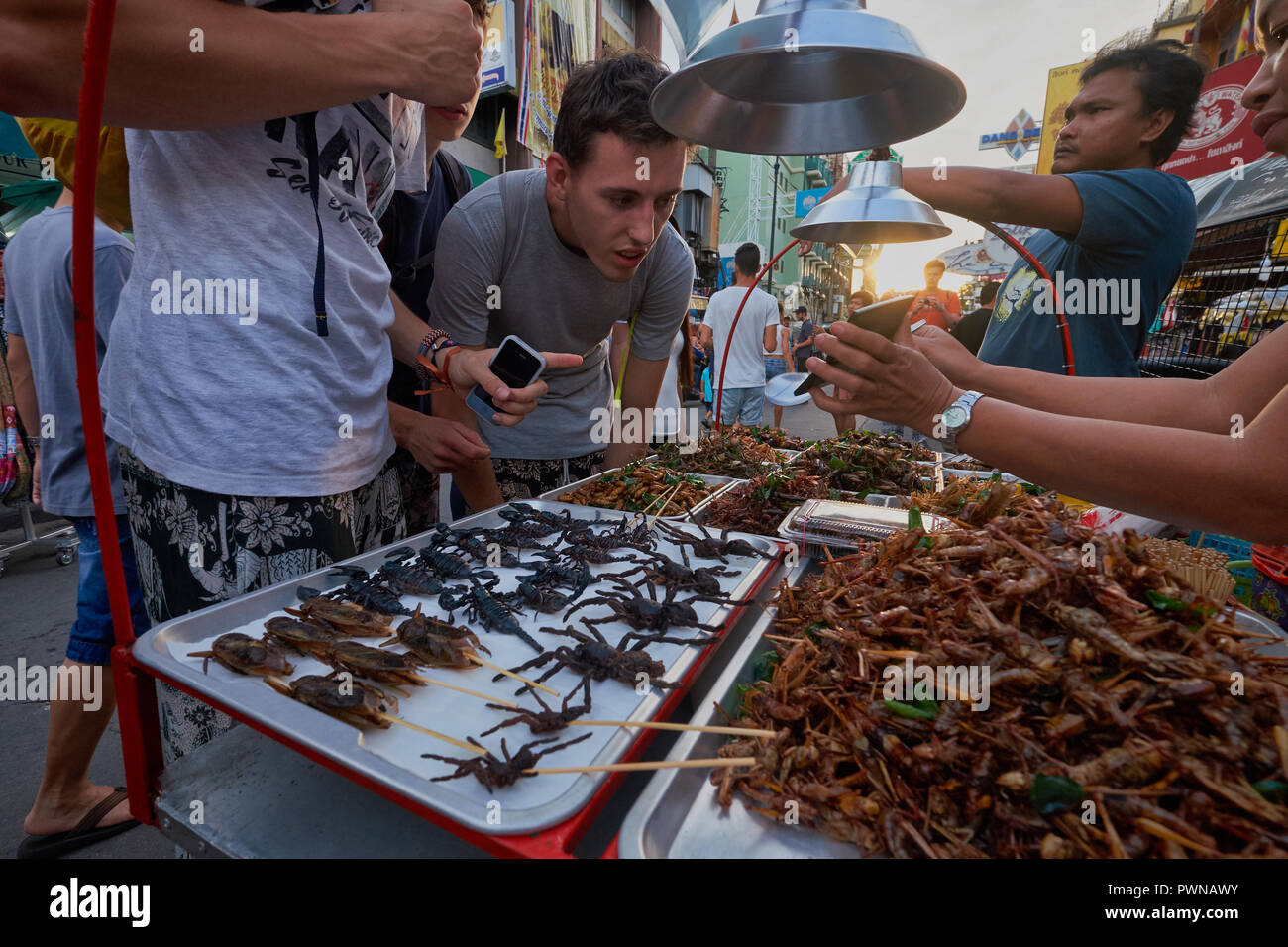 A street stall in Khao San Rd, in Banglamphoo area, Bangkok, Thailand, offering edible scorpions, tarantulas, grasshoppers and all manner of bugs - Stock Image