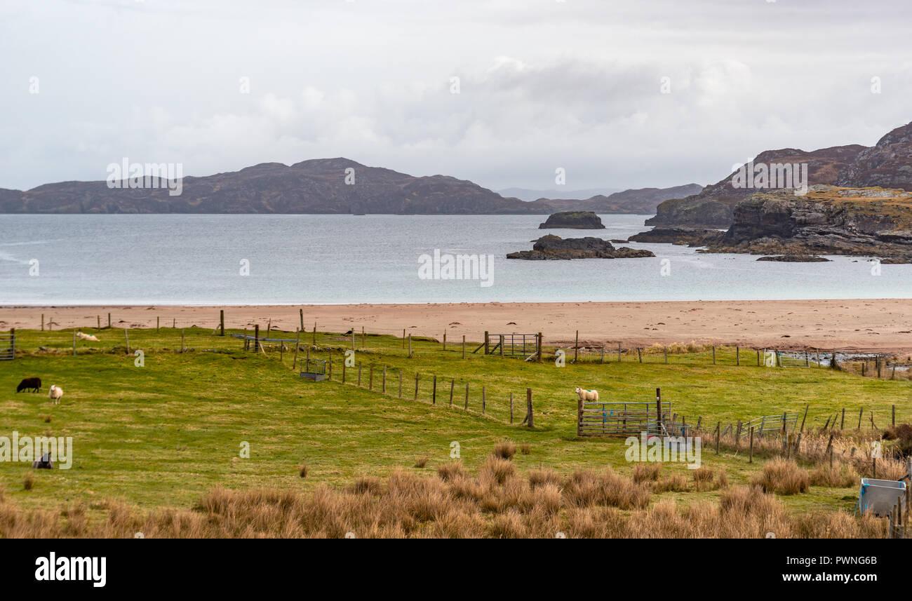 Sutherland Coast Eddrachillis Bay Rhu Stoer Cape Wrath Scotland Antiques Large 1912 Map 2019 Official