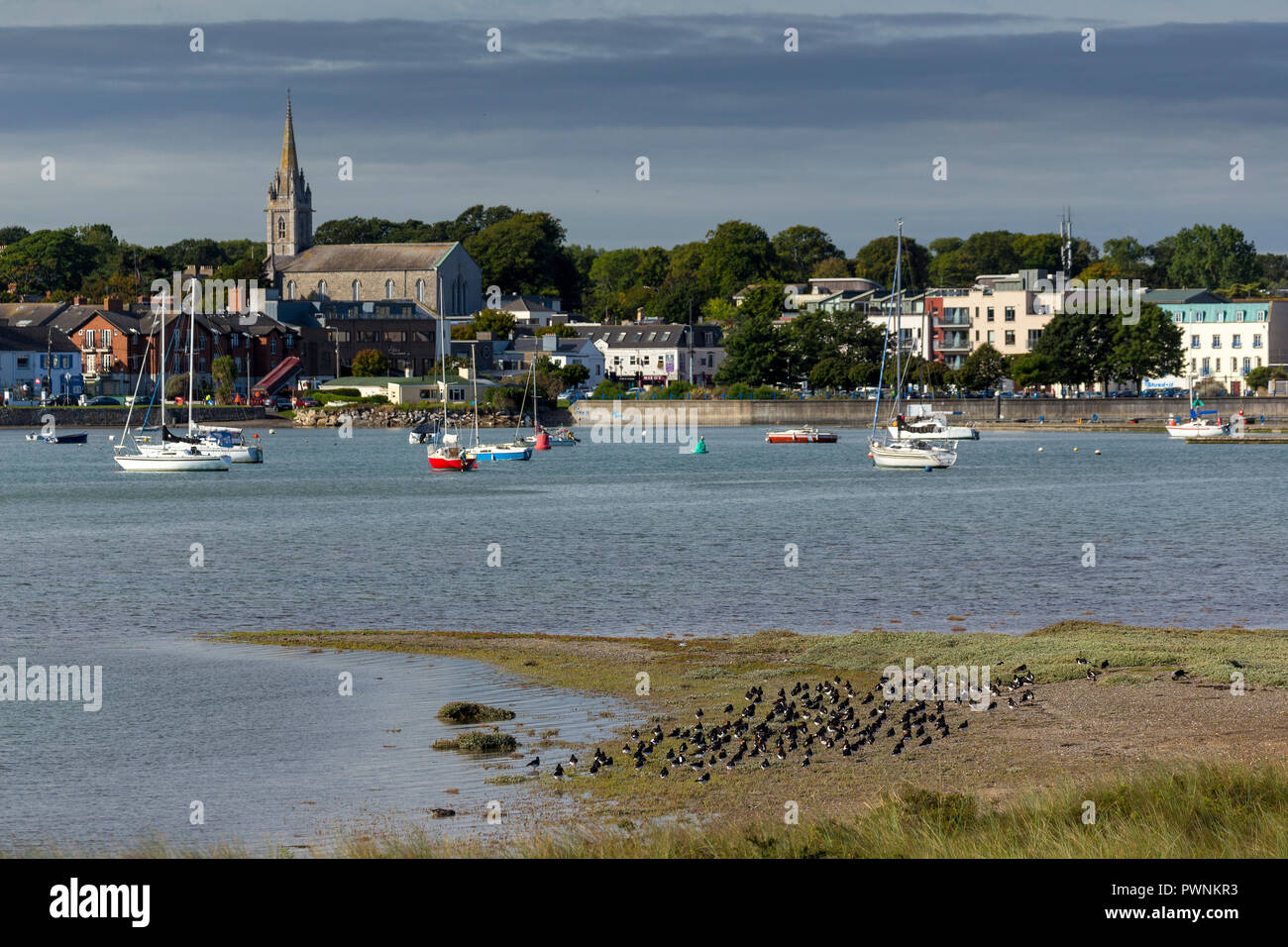 Malahide Estuary Dublin with Oyster Catchers on the sands. - Stock Image