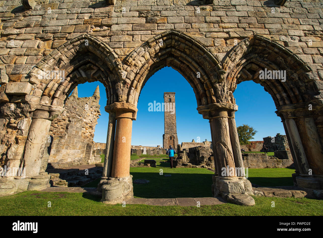 St. Andrews Cathedral and St. Rule's Tower, St Andrews, Fife, Scotland. - Stock Image