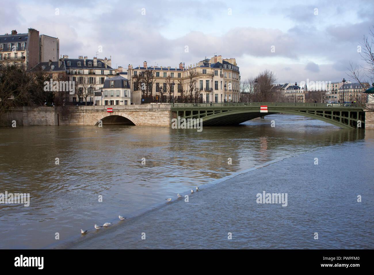 France, Paris, the Seine flooding on 26 January 2018. - Stock Image