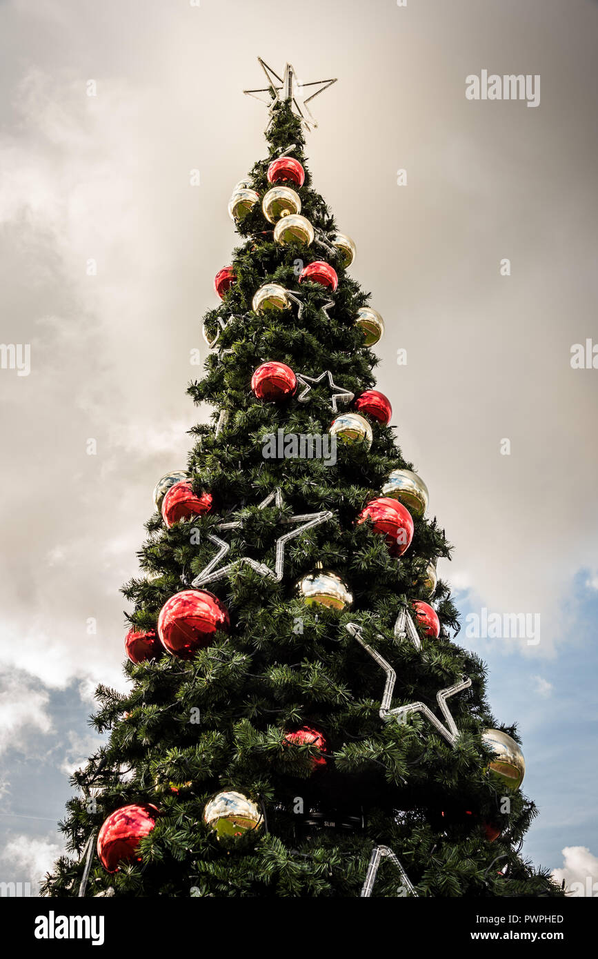 Sapin de noël décoré de boules et d'étoiles en extérieur  / Outside Chritmas tree decorated with stars and balls - Stock Image
