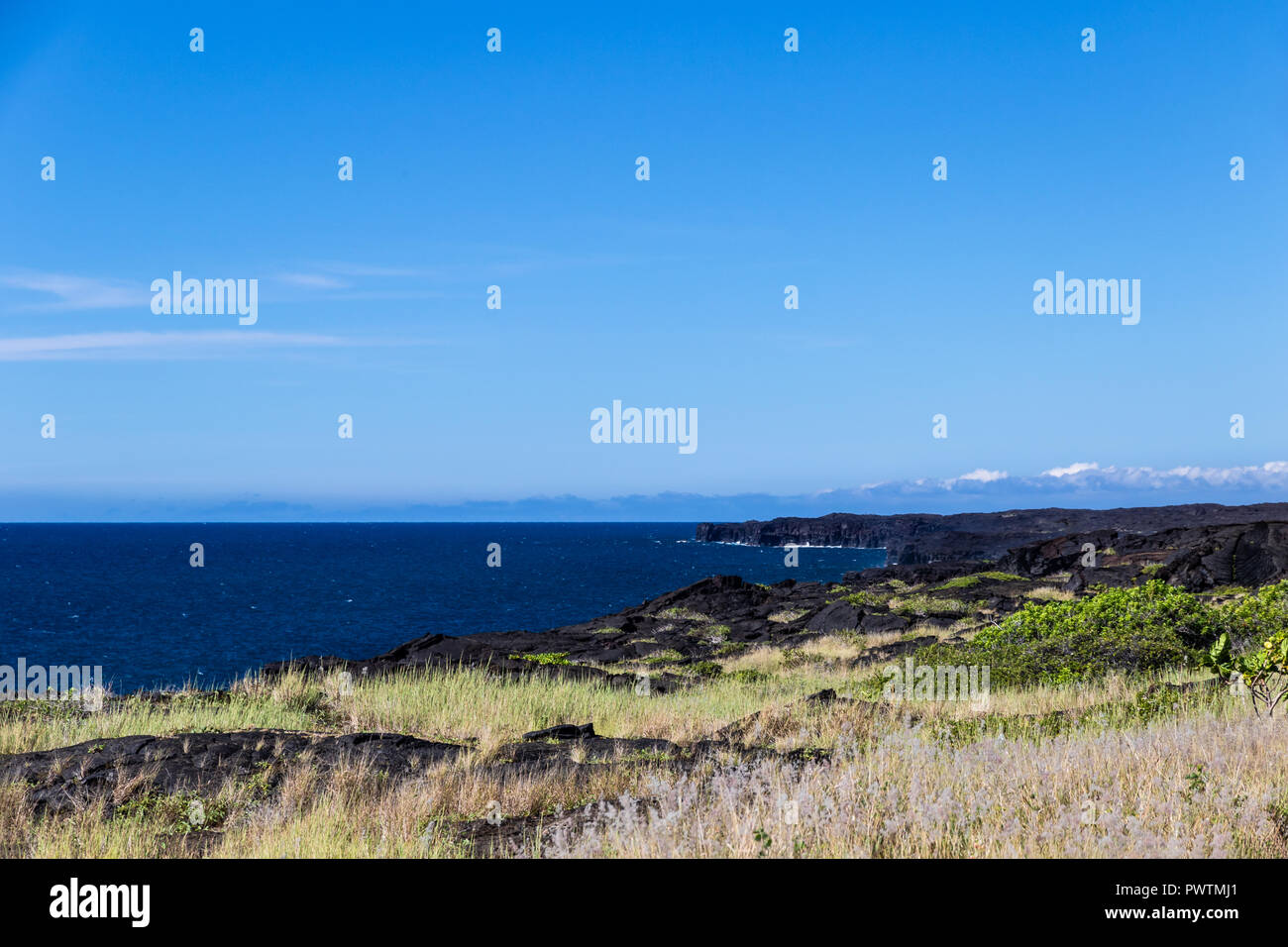 View of Hawaii's Big Island coastline in Volcano National Park. Plants and black volcanic rock in foreground; blue sky & ocean in background. Stock Photo