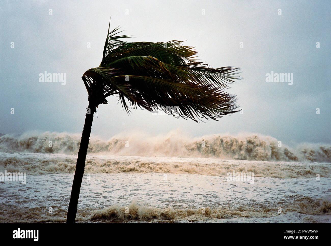 Hurricane Ignacio making landfall in Baja,  Mexico. Stock Photo