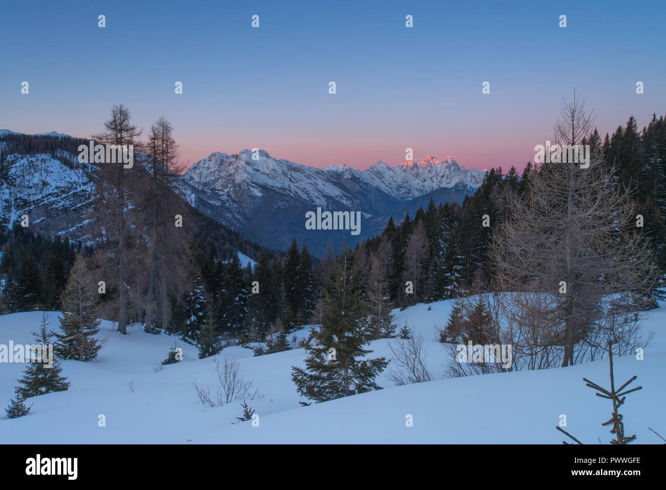 Serene, peaceful sunrise with alpenglow on the Italian Alps. First day of the year, fresh snow, vivid colors and snowcapped mountains amidst trees. - Stock Image